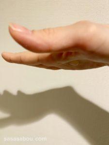 ポーラ・モイスティシモ トライアルセット口コミ 30代乾燥肌